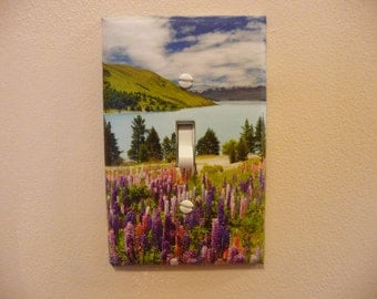 single switch plate decorated with nature scean