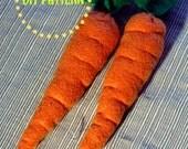 DIY PDF Pattern - Realistic Waldorf Inspired, Felt Carrot Play Food plush toy for Kids