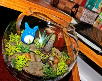 Terrarium in glass, with figure to choose support
