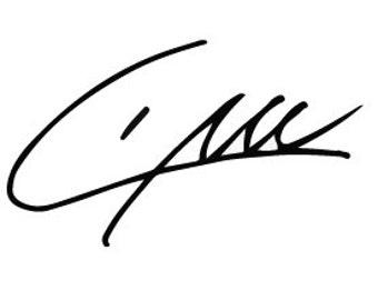 liam payne signature vinyl sticker