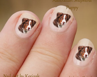 Australian Shepherd Tricolour Puppy Nail Art Stickers, Dog Decals, Aussie.  Fun to use, Great gift