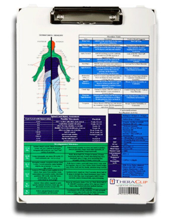 manual muscle testing occupational therapy