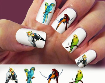 60 Bird nail decal, Parrots, Animal nail decal, nail art, Nail Art design,  Water Slide nail Decals,#BR022
