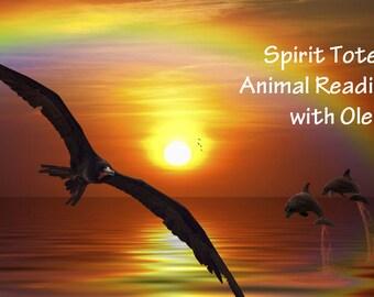 Spirit Totem Power Animal Guidance Reading