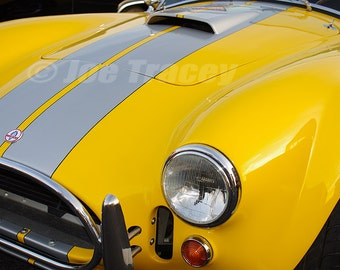 Classic Shelby Cobra Roadster, Classic Automobiles, Automotive Photography, Classic Cars, Automotive Decor, Wall art, Car Pictures, Old Cars
