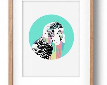 Okay Luna 'Blue Budgie' Print A4