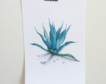 Agave Watercolor