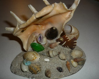 Vintage french souvenir shell from Camaret mi century kitsch country