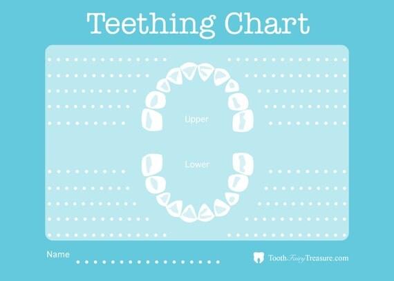 Teething Chart To Record Emerging Baby Teeth Blue
