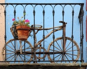 Fine Art Color Photograph, Bicycle with Pink Flowers, Mexico