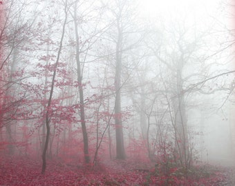 Forest, Magic, Red