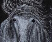 White Stallion ACEO Original