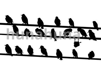 Birds on a telephone line vector instant download