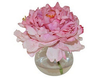 Pink Peony in a Bubble Vase
