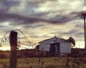 Florida Barn FREE SHIPPING  Landscape Photo Print Small Town South Southern Old Rural Trees Farm Shed Barn Fence Lonely Abandoned Clouds Art