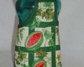Watermelon Garden Dish Soap Bottle Apron Cower Wrap Party Favor Staffer Small