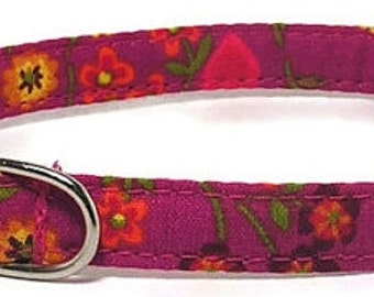 XS Dog Collar - Summertime - Size Extra Small Miniature Teacup - Cute, Pretty and Fancy