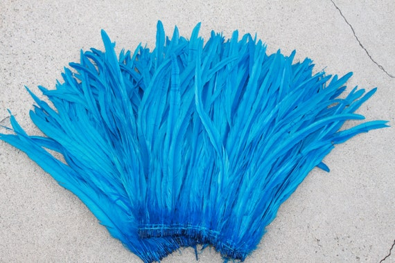 Coque feathers 12 to16 inches long in turquoise-rooster tail_Tahitian dance costume supply