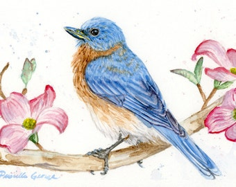 Eastern Bluebird Watercolor Print - Bird Art - Nursery Decor - Nature - Wildlife - Spring Art - Various Sizes 5x7, 8x10, 11x14