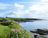 Classiebawn CASTLE, Mullaghmore, Co. Sligo, IRELAND, Landscape Photography, Sunny Day, Irish Sea, Sea Pinks, Cliffs Photo, Bay, West Coast