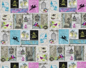SPX Fabrics, SongBirds Blocks on Grey, half yard
