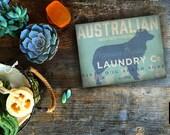 Australian Shepherd Laundry Company illustration graphic art on canvas panel  by stephen fowler Pick A Size