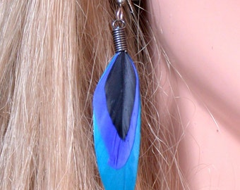 Black and  Blue Feather Earrings- Ready to Ship