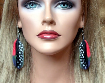 Parrot Feather Earrings- Ready to Ship- All natural feathers