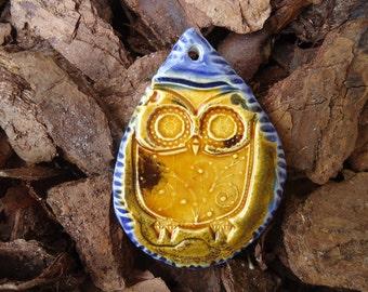 Owl in a Teardrop Pendant
