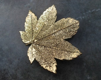 Real Leaf Brooch/Pin and Pendant - 24k Gold - Full Moon Maple