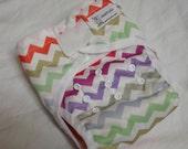 Two Step Cloth Diaper Cover Rainbow Chevron