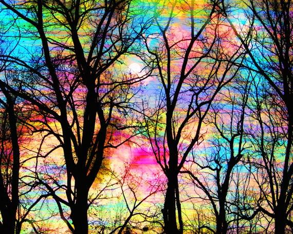 8x10, Cotton candy sunrise, Art, photography, nature, trees, sunrise, tree art, Fine Art altered photograph, Woodland wedding gift