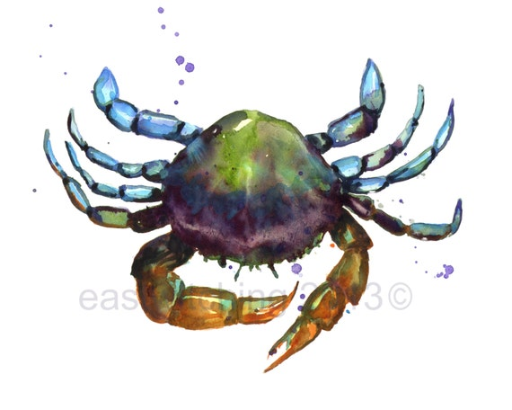 Watercolor CRAB PRINT,  beach house art, watercolor crab, 8x10 print, crab, cancer zodiac gift