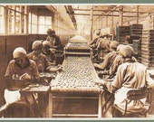 Workers in Jacob's Biscuit Factory