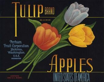 Tulip Apple Fruit Crate Label