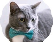 Bow Tie Cat Collar >> Solid Colors { 14 Colors } Chariots Afire Costume Kitty Solid Bowtie Pet Dr Who Kitten Red Pink Green Navy Black