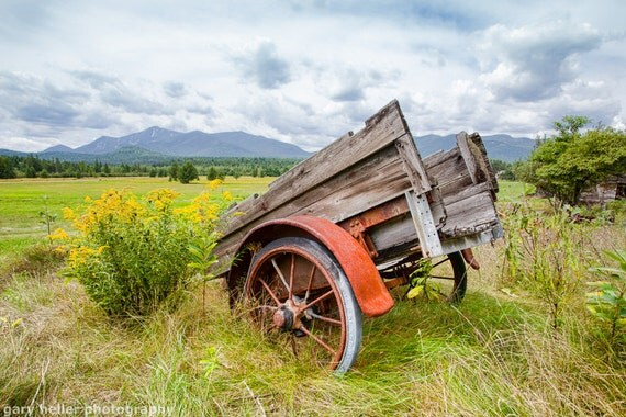 Wagon Wildflowers Rustic Landscape, Fine Art Photography, Adirondack Mountains, Color Photograph signed.