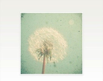 SALE 30% OFF Dandelion Clock Flower Photograph on Matte Paper - Dandelion Clock