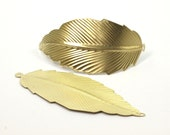 6 Raw Brass Leaf Pendant with 2 Holes (75x31 mm)  D065