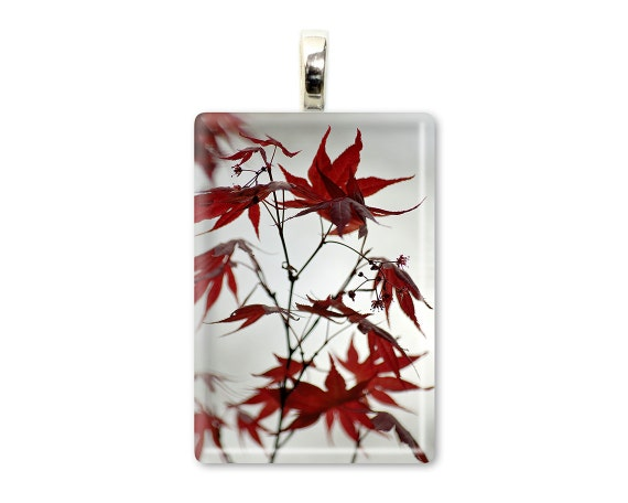 "Zen Tree Leaf Jewelry - Maroon Red Nature Pendant - Tree Art Necklace - Glass Tile Photo Pendant - ""Japanese Maple Wild"""