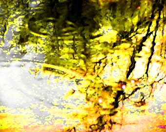 Ripples of Hope 16x20 Abstract Art Water Photography Color Nature Modern Wall Art Photo Home Decor in Yellow Green White Black