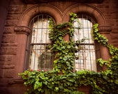New York Windows - Dreamy Photography - Arched Window - Brick Wall and Ivy - New York Photography - Architecture Art - Fine Art Photography