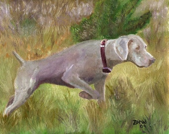 Weimaraner Dog art Print  by Mary Jo Zorad