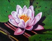 Water Lily - Original Oil Painting on 6x8 Wrapped Canvas