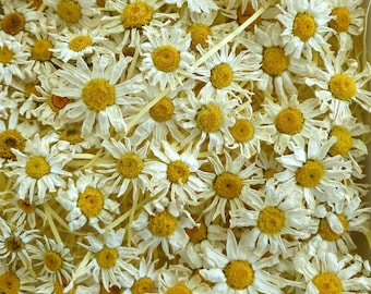 Dried Daisies, Small White Daisies, White Confetti, Table, Dried Flowers, Craft Supply, Wedding Confetti, Resin Jewelry, 50 Real Daisies
