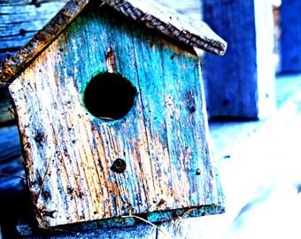 Birdhouse photograph - Lonely Little birdhouse fine art print -  blue, shabby chic