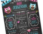 """Print Your Own, Digital Personalized Baby Shower Poster, 8"""" x 10"""", 11"""" x 14"""", 16"""" x 20"""", Pink & Blue Baby Owls, Chalkboard Look, JPG"""