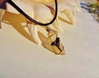 Light Brown Sea Glass and Shark Tooth Fossil necklace - Beach Candies by Jessentials