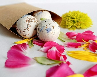 Seed Bombs 12 Botanical Seed Balls with Wildflower Garden SEEDS Gift for Gardener