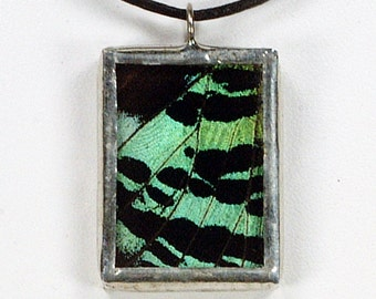 Real Butterfly Necklace - Madagascar Sunset Moth (Top Wing) - Glass And Lead Free Solder